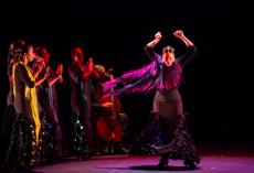 Juan Siddi Flamenco Santa Fe Company