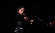 Noche Flamenca at Hojas de Te, Mexico City, 2014