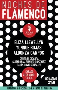 Noches de Flamenco en Agora