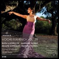 Noche Flamenca Vol. 28 at Hojas de Té, Mexico City